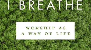 Air I Breathe (1)