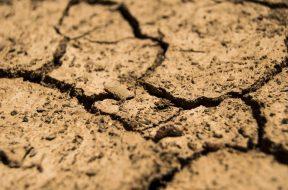 pastor-resources-God's Plan for Renewal
